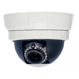 Viscoo vandaalbestendige IP camera 1,3Mp